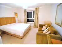 MUST SEE! AMAZING ROOM FOR AMAZING PRICE NEAR PLAISTOW STATION