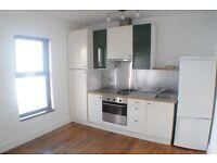 1 Bed Apartment Gray hill Bangor