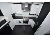 beautiful brand new newly renovated 1 bedroom flat in Dagenham.