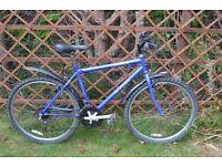 "Men's Alpine Colorado Road Bike - 15 speed - 18.5"" frame. Fully serviced"