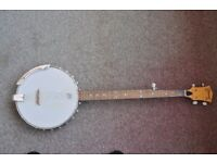 Ozark 5-String traditional open back Banjo with Remo Weatherking head, Thatcham, Berkshire