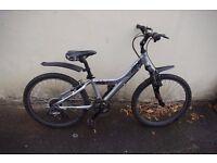 Boys Bike Giant MTX 225
