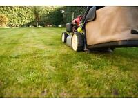 General Gardening Services & Maintenance