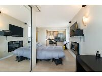 Magnificent studio/1 bed of nearly 450SqFt in Prime Central Location of W1