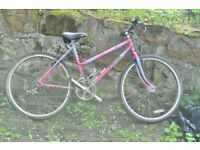Ladies Raleigh bicycle, pink & purple. 12 speed shimano gears. Good bike for on and off road use