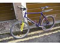 Classic Saracen Terratrax mountain bike.