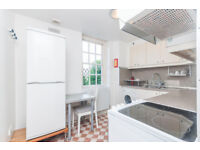NEWLY DECORATED, CLEAN FLAT IN A VERY GOOD LOCATION - SW1 - WESTMINSTER