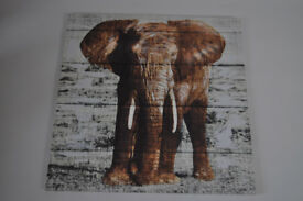 large wildlife canvas prints