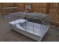 Indoor Guinea Pig or Rabbitt cage