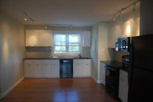 Renovated 2BDR Apartment in Vanier - $1,400/month