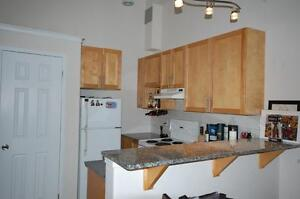 Acadia Suites Downtown- 1 Bedroom+Loft Avail NOW!