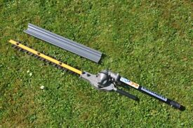 Ryobi Expand-It Articulating Hedge Trimmer