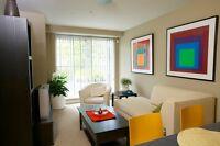 Window coverings, Internet ready, Carpeted floors