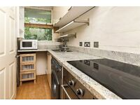 Lovely newly refurbished studio - Separate kitchen - Lupus Street/Pimlico station zone 1 - CHEAP 275