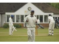Players wanted, all abilities, competitive and social cricket for the family