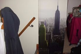 "LONG CANVAS NEW YORK CANVAS PICTURE HEIGHT 48"" WIDTH 20"""