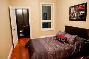 One Bed Space Left in Luxurious Student Unit Kingston Kingston Area image 15