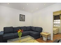 FANTASTIC 2 BEDROOM APARTMENT IN MARBLE ARCH