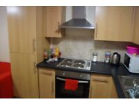 BEAUTIFUL 1 BEDROOM FLAT TO RENT ON LOWER CATHEDRAL ROAD £560 WATER INCLUDED