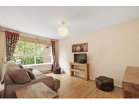 Modern 2 double bedroom flat in St. John's Wood/Marylebone available NOW only £475pw