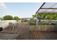 SHORT TERM- fantastic 2 bed flat with huge sun terrace