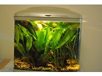 fish tanks and extras