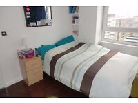 AN EXTREMELY NICE **DOUBLE ROOMS** close to CANNING TOWN Station