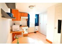 Earls Court - Nice and Clean, Self Contained Studio Flat