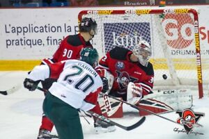 Mooseheads Game 3 lower bowl tickets Tuesday night