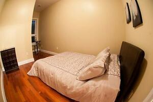 Luxurious Student Units Available in Downtown Kingston Kingston Kingston Area image 12