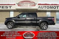 2013 Ford F-150 Triple Black FX4 Crew 4x4 Ecoboost, Leather, Roo