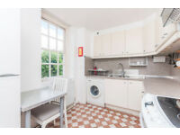 **GREAT PRICE** Bright & Spacious 1 bed flat in the heart of Pimlico min from Victoria & Westminster