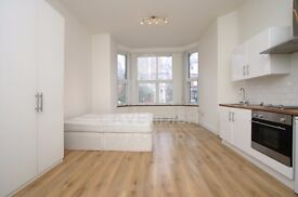 ABSOLUTELY AMAZING PERIOD CONVERSION STUDIO HOME- HIGH CEILINGS- FEW BILLS INCLUDED- MUST SEE