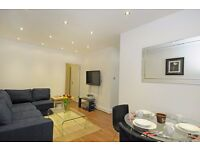 Stunning two bedroom flat close to Hyde Park