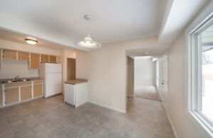 Fenced Yards and 1.5 Bathrooms in West Edmonton