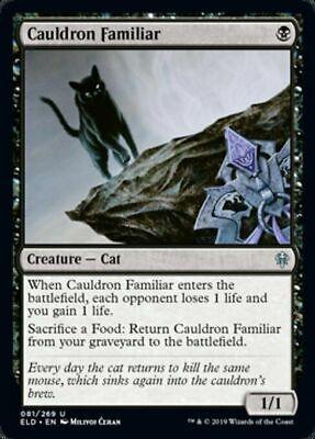 Cauldron Familiar x4 Magic Throne of Eldraine 4 cards MTG Mint