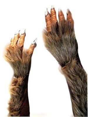 Krallenhände Hände Werwolf Monster Grusel - Halloween Monster Händen