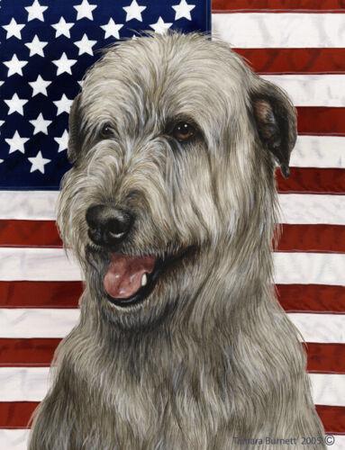 Patriotic (D2) House Flag - Grey Irish Wolfhound 32329