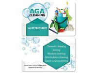 Aga Cleaning Service | I Love the Jobs You Hate