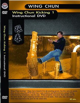 DVD:Wing Chun Kicking1 Instructional By Sifu Gary Lam