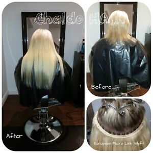 HAIR EXTENSIONS, colour, cut and more.... (FB: Chaldo HAIR) Kitchener / Waterloo Kitchener Area image 7