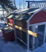 Adorable Portable Chicken House and Accessories for sale...