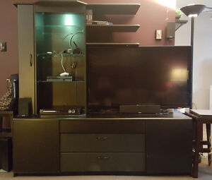 TV Wall Unit / Entertainment Center - **$100 OR BEST OFFER**
