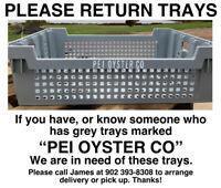 Oyster Trays
