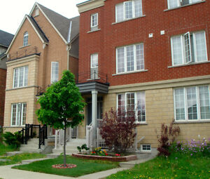 Artistic, Clean & Comfortable, Nearby York University