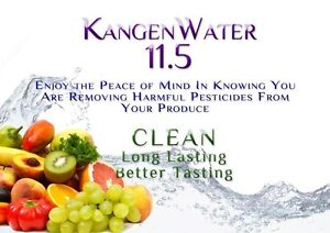 Enagic Kangen Water Ironizing System-Windsor Region Windsor Region Ontario image 6