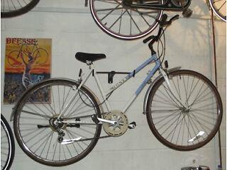 Hybrid Raleigh Pioneer Dutch Bike Warranty frame 19in perfect bike 6 gear The Peanut Factory