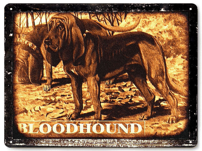 Bloodhound hunting dog metal sign / funny pet shop vintage style wall decor 321