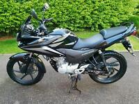 Honda CBF 125 62 Plate