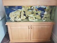 Aquarium 4ft for sale
